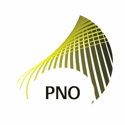 Logo van PNO Consultants