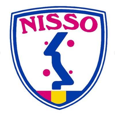 日綜産業株式会社のロゴ