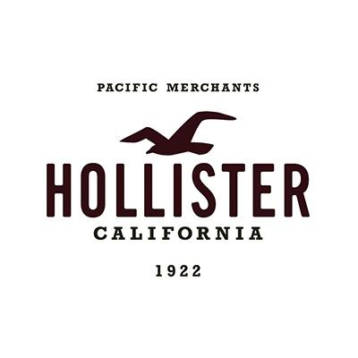 Hollister Co logo