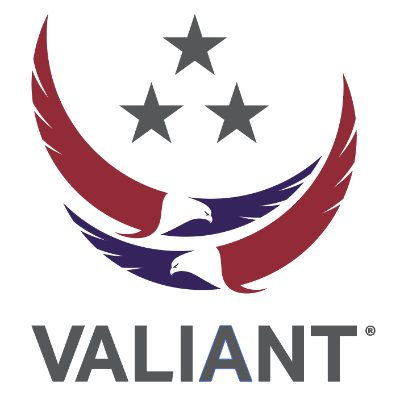 Valiant Integrated Services logo