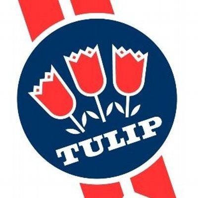 Tulip Ltd logo