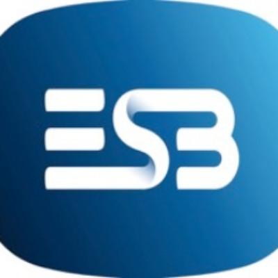 Electricity Supply Board (ESB) logo