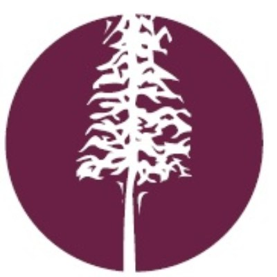 Bay Street Orthopaedics logo