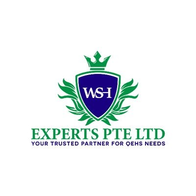 WSH Experts Pte Ltd logo