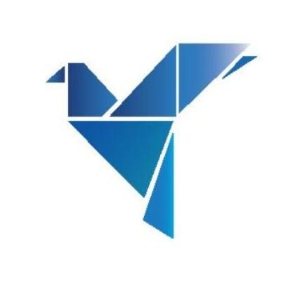 Visionaires logo