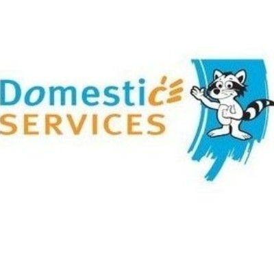 DOMESTIC SERVICES logo