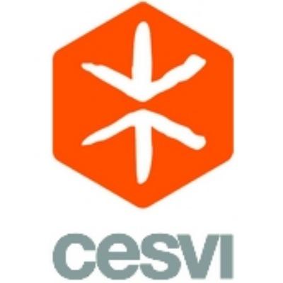 Logo Cesvi Fondazione onlus
