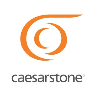 CAESARSTONE CANADA INC logo