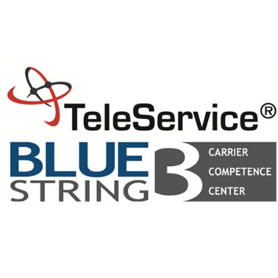 Bluestring-Logo