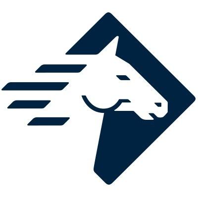 Logo Paladin Security