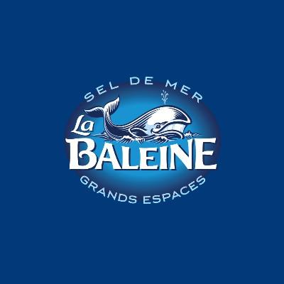Logo Groupe Salins