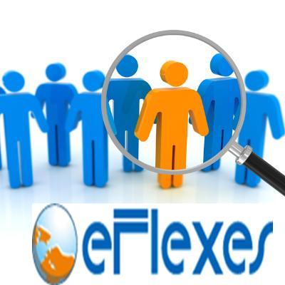eFlexes logo