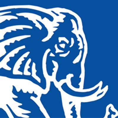 Pink Elephant Inc logo