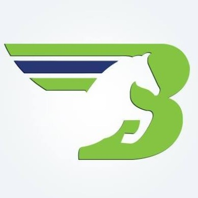 Logo Bronco Transportation Systems Inc