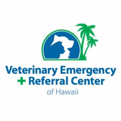 Average Veterinary Technician Salaries In Honolulu Hi Indeed Com