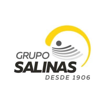 logotipo de la empresa Grupo Salinas S.A. de C.V.