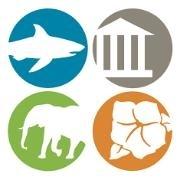 WILDLIFE TRADING COMPANY logo