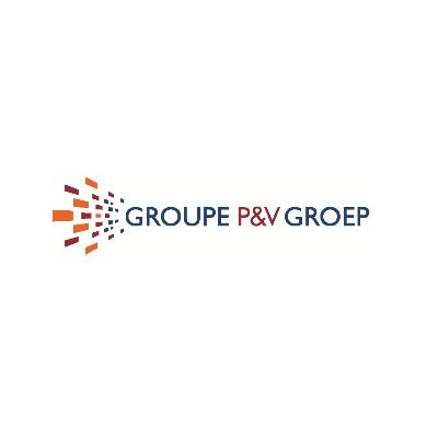 Logo P&V Group
