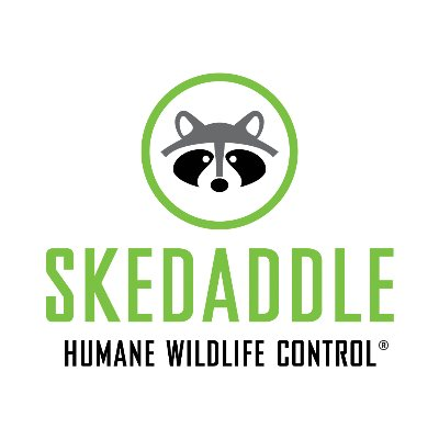 Skedaddle Humane Wildlife Control logo