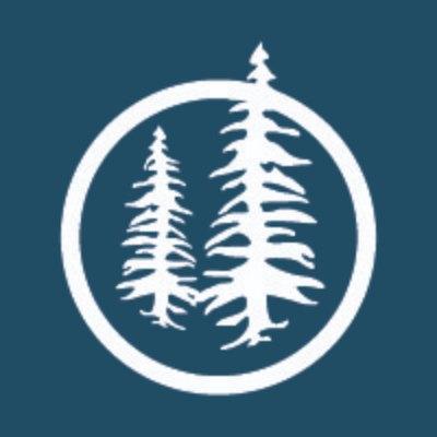 Blue Pine Enterprises logo