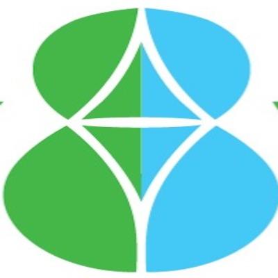 Logo Energy Vision