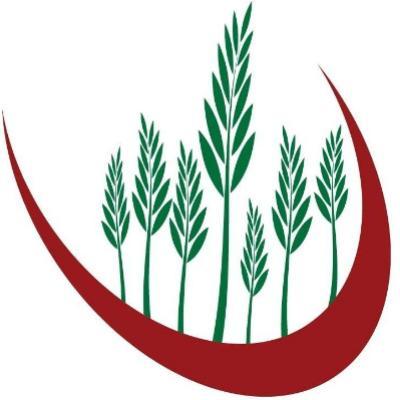 Independent Irish Health Foods Ltd logo