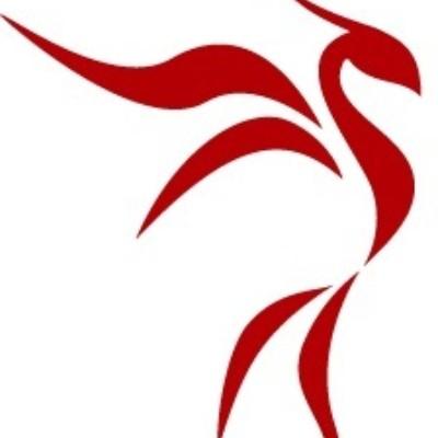 Project Phoenix GmbH-Logo