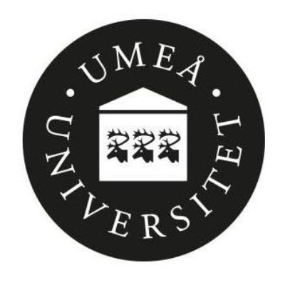 Umeå Universitet logo