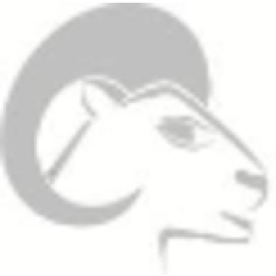 Logo Ram Iron & Metal Inc.