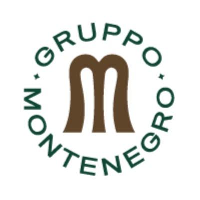 Logo Gruppo Montenegro