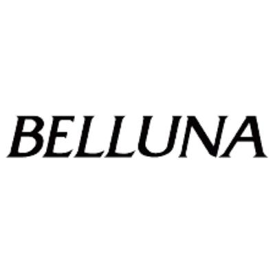 株式会社ベルーナユナイテッドのロゴ