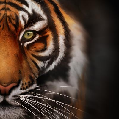 Tiger Correctional Services Careers and Employment | Indeed com