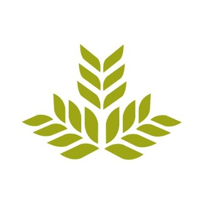 Northeast Georgia Health System logo