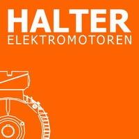 Theo Halter GmbH Elektromotoren-Logo