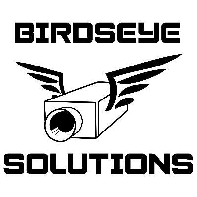 Logo Birdseye Solutions