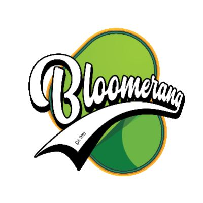 Bloomerang logo