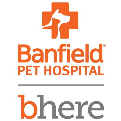 Working As A Technician At Banfield Pet Hospital Employee Reviews