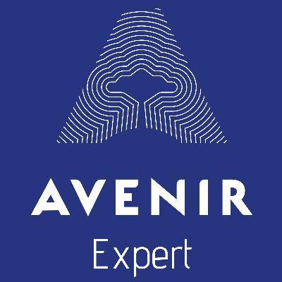 Logo Avenir Expert