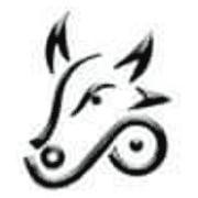 Buffalo Biodiesel Inc. logo