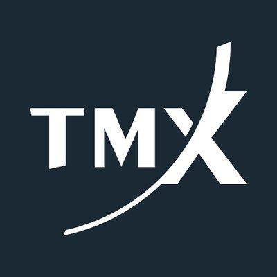 TMX GROUP logo