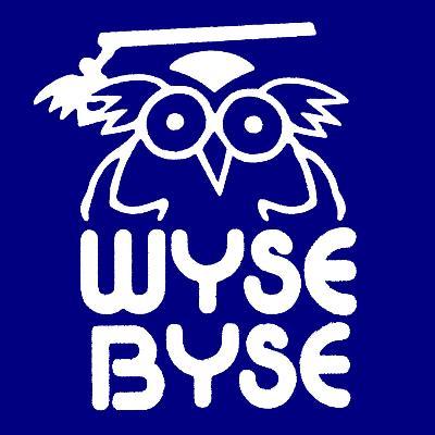 Wyse Byse logo
