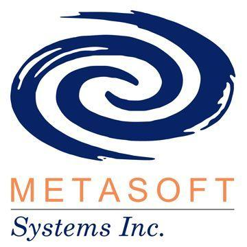Metasoft Systems Inc logo