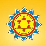 Shyam Steel Industries Ltd logo