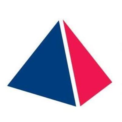 The Panel logo