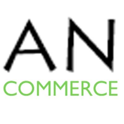 AN & Associates logo