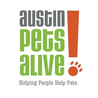 Austin Pets Alive Careers And Employment Indeed Com