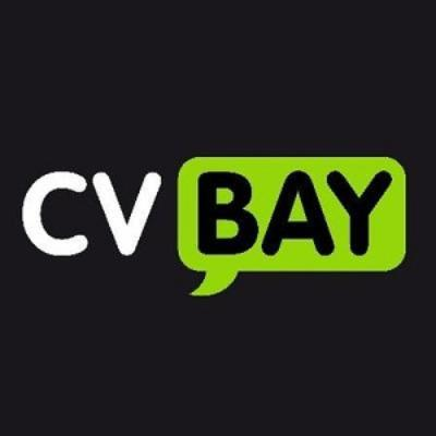 CV Bay Ltd logo