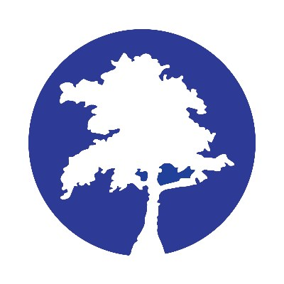 Blue Cypress Consulting logo
