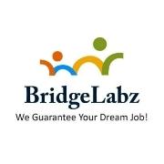 BridgeLabz Solutions LLP logo
