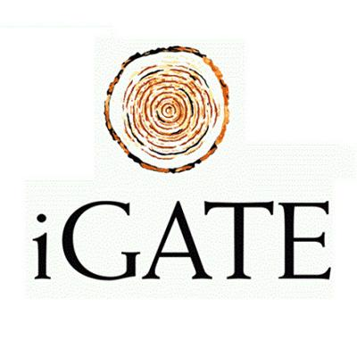 Working at iGate Corporation: 350 Reviews | Indeed co in